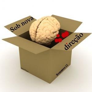cerebro rm 12